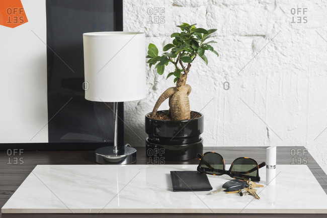 Close-up of lamp and houseplant by accessories on marble at table