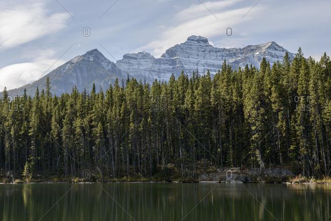 Banff National Park, Herbert Lake, forest, Rocky Mountains