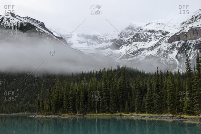 Maligne Lake, Alberta, forest, fog, haze, mist, mountain, cloudy, snow, shore