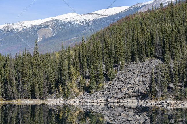 Jasper National Park, Horseshoe Lake, Alberta, boulders, stones, slope, destruction, landslide, landslip, forest, Rocky Mountains
