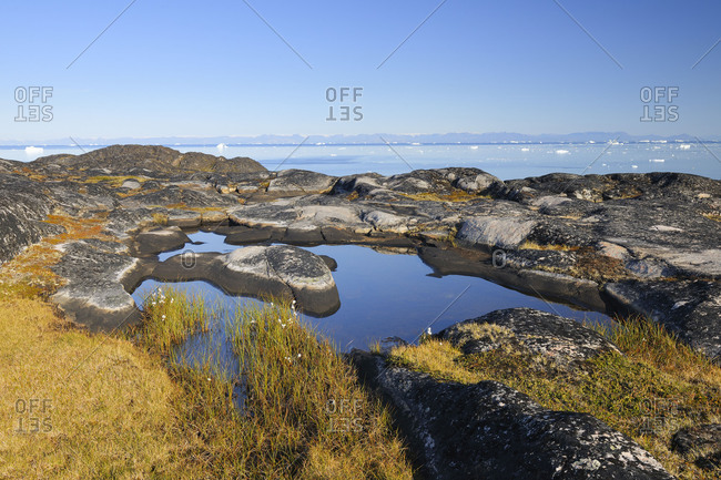 Arctic rock landscape with little pond in summer, Ilulissat, Icefjord, Disko Bay, Qaasuitsup, Greenland, Polar Regions, Arctic