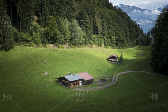 Austria, Tyrol, Alpbach valley, Alm below the Reither Kogel.