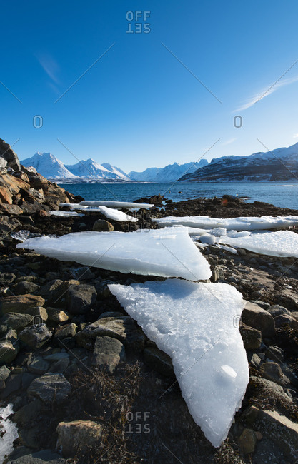 Europe, Norway, Troms, Breivikeidet, ice floes on the beach