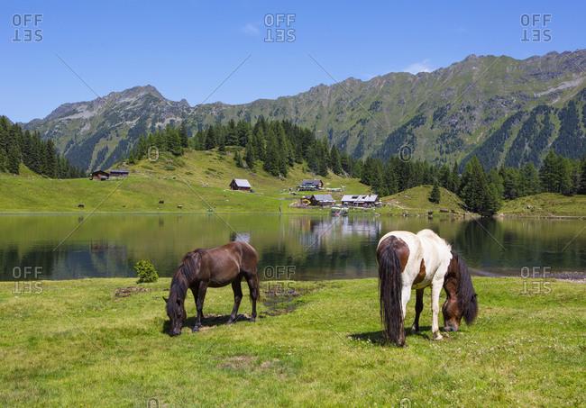 Austria, Styria, Schladming, Obertal, Duisitzkarsee, mountain lake, Duisitzkar hut, Fahrlechner hut, Schladminger Tauern, Horses