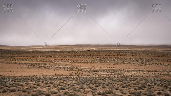 Morocco, travel route along road N10, Agdz, Tazenakht