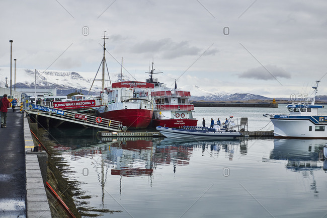 Iceland - August 27, 2018: Iceland, Reykjavik Harbor, Boat tour, whale-watching boats in the old harbor