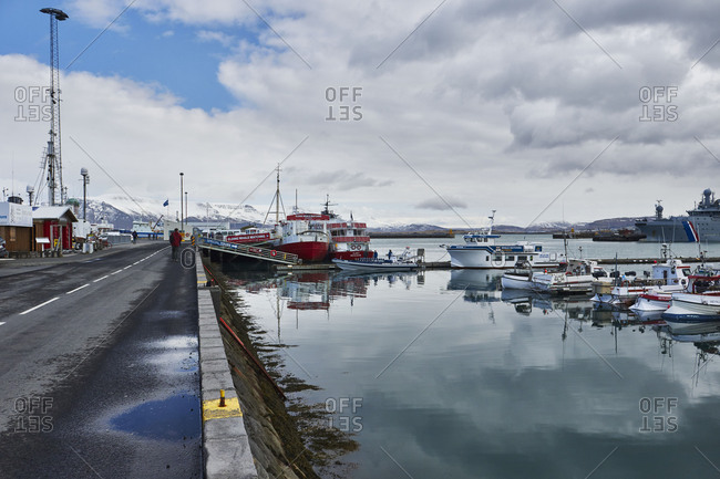 Iceland, Reykjavik Harbor, Boat tour, whale-watching boats in the old harbor