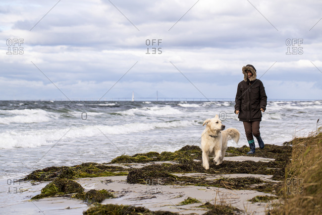 Woman with dog walking on beach