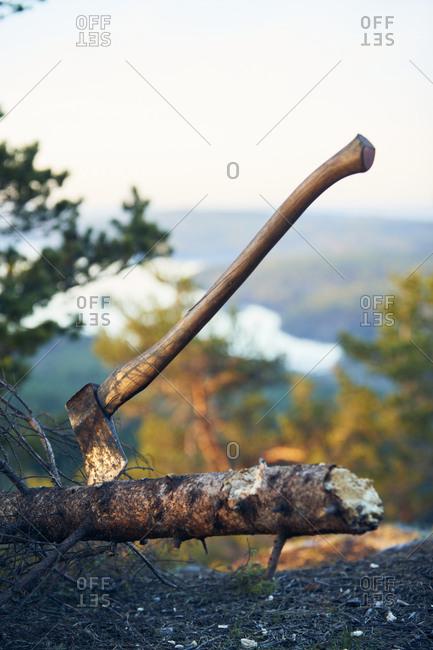 Axe in tree trunk