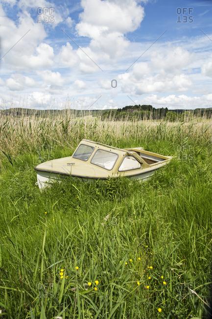 Abandoned motor boat in reeds