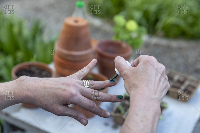 Woman painting nails over seedlings