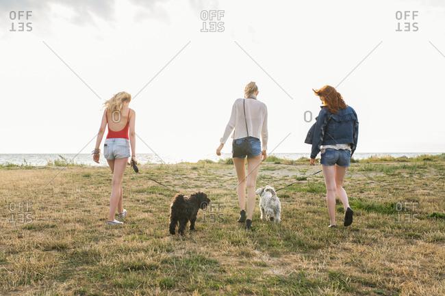 Three woman walking their dogs near the ocean