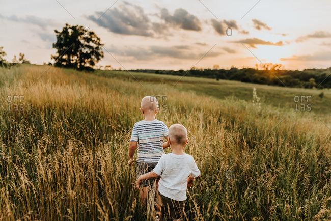 Two boys walking through tall grass