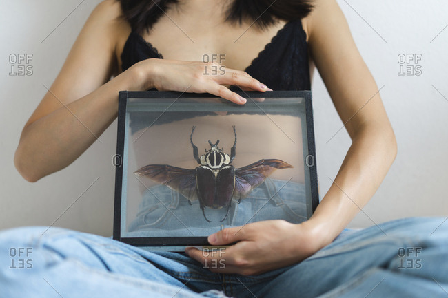Close-up of young woman wearing bra holding picture frame with giant beatle