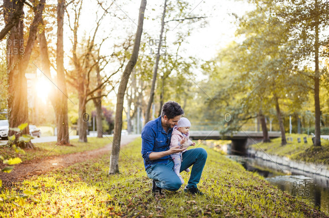 Father searching for chestnuts in park- with baby daughter on his lap