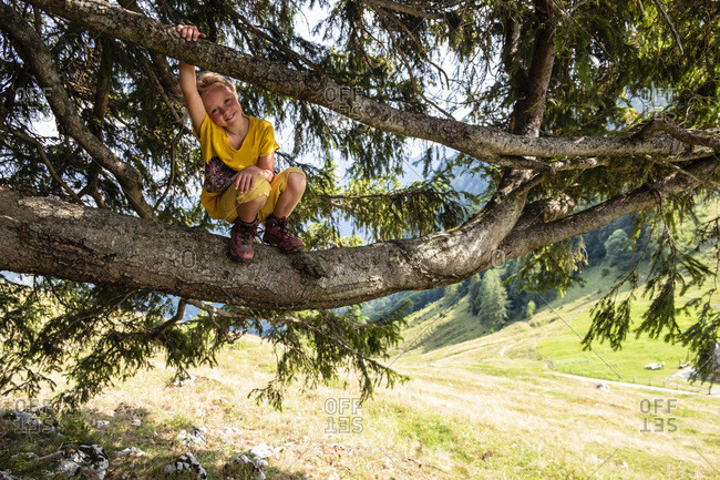 Portrait of smiling girl crouching in a tree