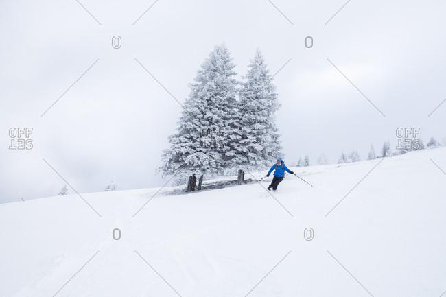January 3, 2017: Austria- Salzburg State- Osterhorn Group- skier