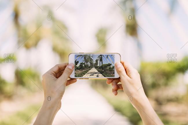 Spain- Valencia- Ciudad de las Artes y de Las Ciencias- L'Umbracle- woman taking cell phone picture at palm garden