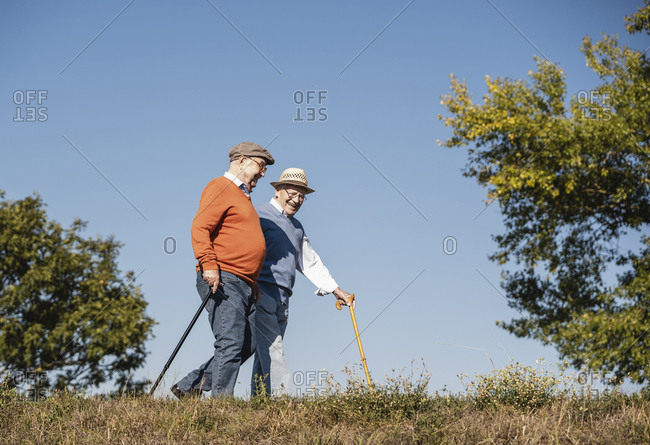 Two old friends taking a stroll through the fields- talking about old times