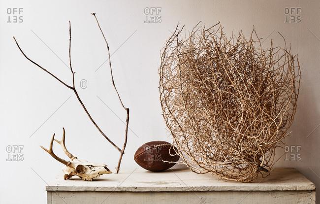Tumbleweed, football and animal skull on mantle
