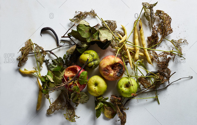 Rotten apple and wax beans