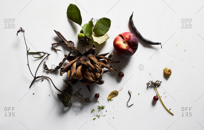 Rotten artichoke and fruit on white background
