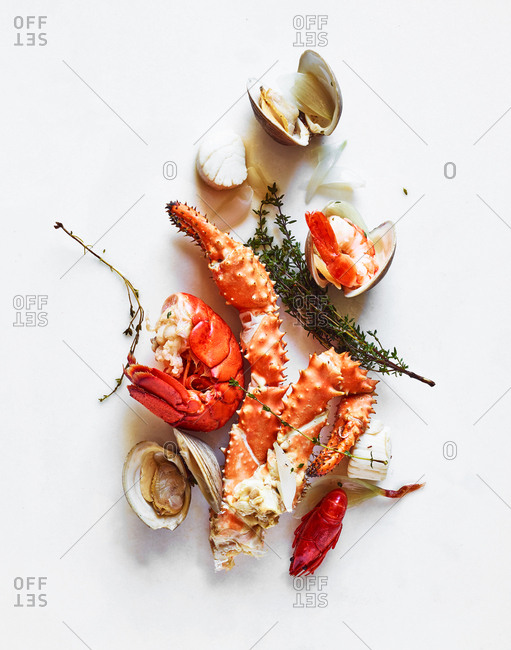 Various seafood on white background