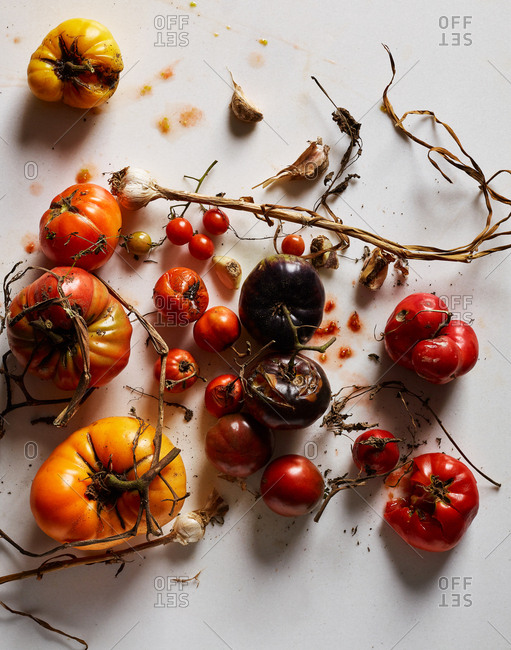 Heirloom tomatoes and garlic on white background
