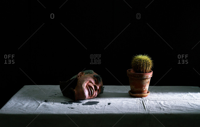 October 15, 2018 - Rubber head on table with potted cactus