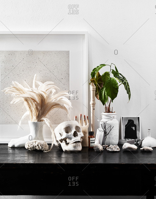 October 5, 2017 - Still life with skull, feathers, recorder, potted plant, bottle of Aesop Rind Concentrate, and card from Barneys New York displayed on shelf