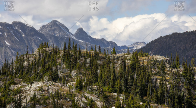 A hill side covered with trees is seen in a foreground as high mountain peaks are seen in the background. This is a popular area for backpacking due to its beautiful views and relatively easy access from a logging road, Pemberton, British Columbia, Canada