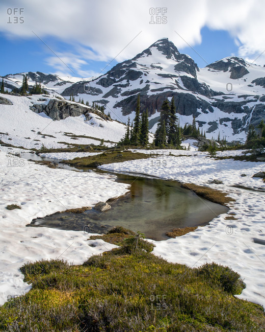 A creek formed from snow melt runs out from beneath a snow field as Locomotive Mountain can be seen towering above. This is a popular area for backpacking due to its beautiful views and relatively easy access from a logging road,���Pemberton, British Columbia, Canada