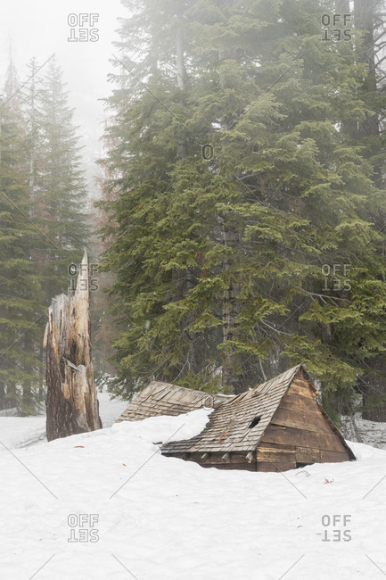 Old abandoned cabin covered by snow in���Devils Postpile National Monument���within���Ansel Adams Wilderness Area, California, USA