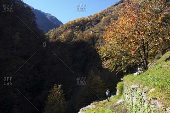 Rear view shot of a single woman hiking in a natural setting, Corippo, Ticino Canton, Switzerland