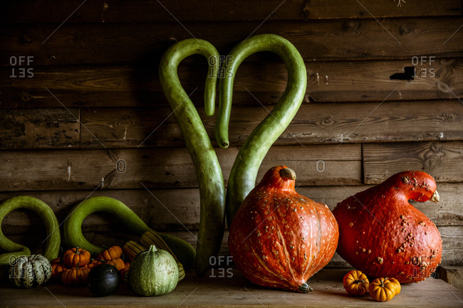 Close up of a selection of green and orange pumpkins on wooden shelf.