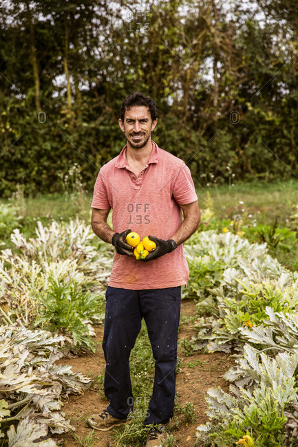 Farmer standing in field, holding freshly harvested yellow zucchinis, smiling at camera.