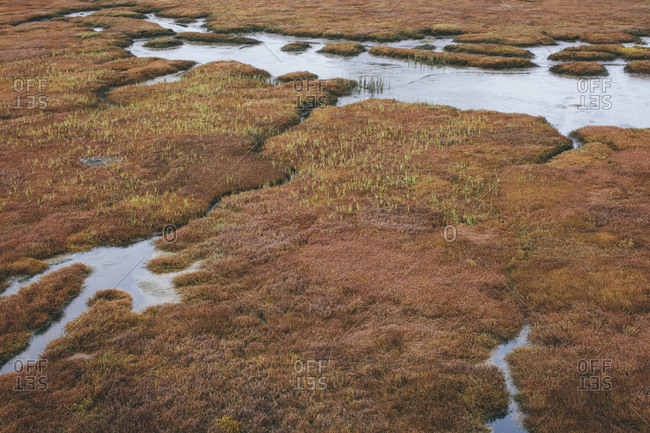 Elevated view of marsh and tidelands at dusk, Drakes Estero, Point Reyes National Seashore, California, USA.