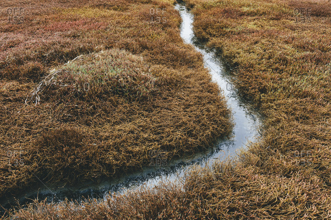 Detail of intertidal wetlands and water channels, Drakes Estero, Pt. Reyes National Seashore, California, USA.