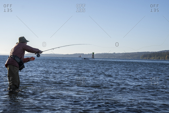 A caucasian male fly fisherman casts for searun coastal cutthroat trout and salmon in salt water off Indian Island in northwest Washington State, USA.