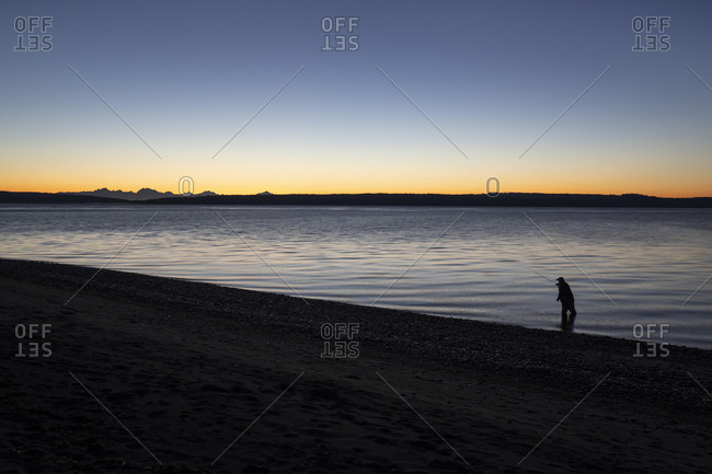 A fly fisherman gets ready to wade into salt water at sunrise and fly fish for coastal cutthroat trout and salmon at a beach on the north west coastline of the USA.  USA