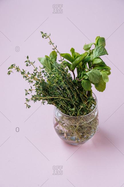 Homegrown herbs in a glass jar