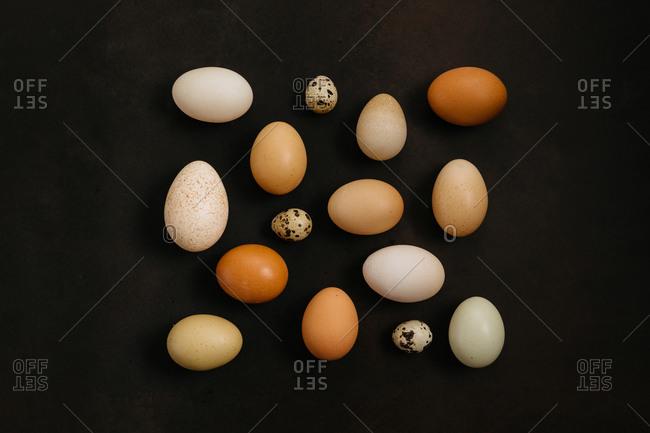 Variety of eggs on dark background