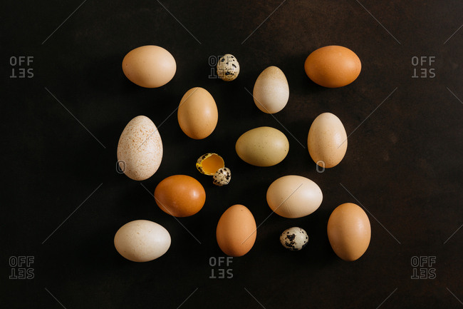 Variety of eggs on dark background with one cracked open