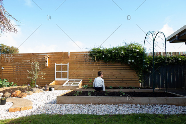 Rear view of boy sitting on raised backyard garden