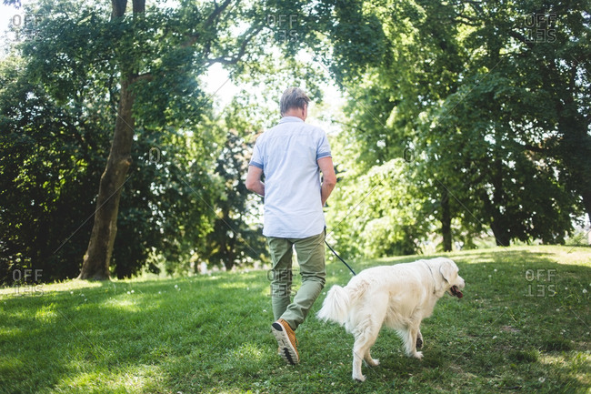 Rear view of senior man walking with dog on grassy field at park