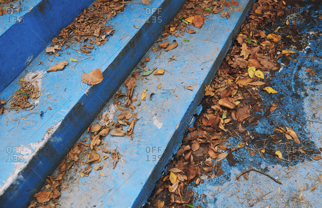 Blue concrete staircase covered by fallen leaves