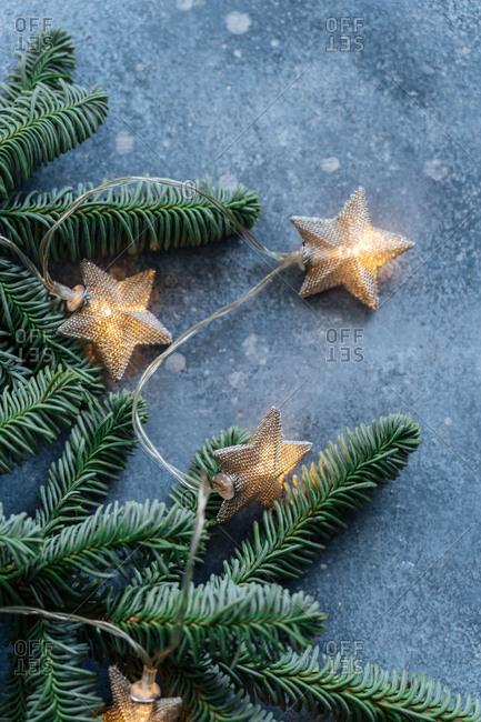 Star shaped lights on Christmas tree branch