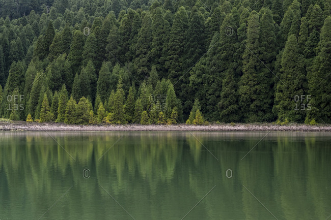 Lagoa do Peixe