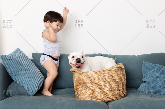 Toddler playing with dog in a basket on a couch