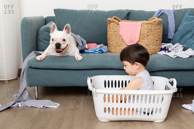 Toddler and dog playing with laundry baskets